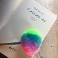 the danish girl libri film