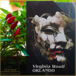 O - Orlando - Virginia Wolf - Mondadori