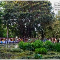 Una marina di libri - Palermo