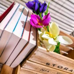 Cinque libri presi a scatola…