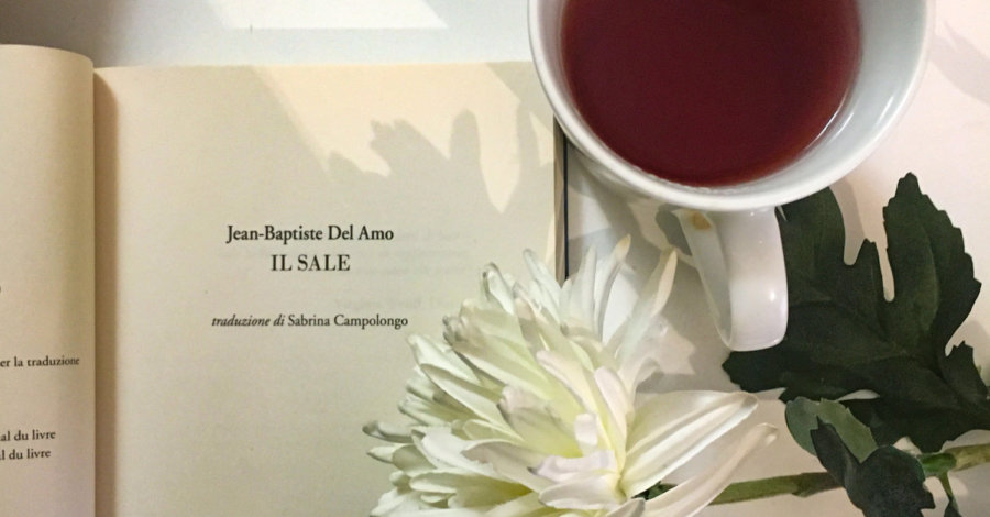 Il sale - Jean Baptiste Del Amo - Neo Edizioni