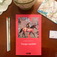 Tempo variabile - Jenny Offill - NN editore