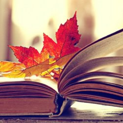 Cinque propositi letterari per il…