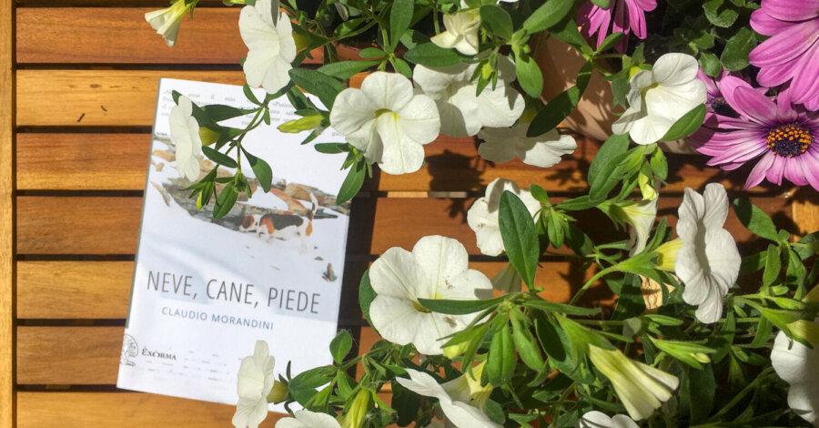 Neve cane piede - Claudio Morandini - Exorma editore