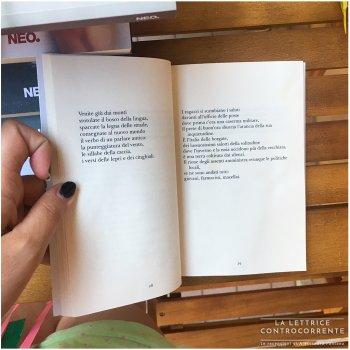 La terza geografia - Carmine Valentino Mosesso - Neo edizioni